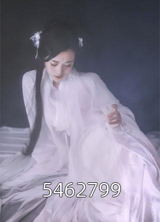 5462799小说