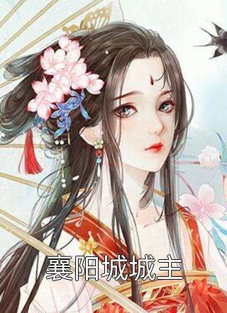 襄阳城城主小说