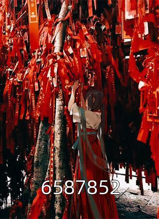 6587852小说